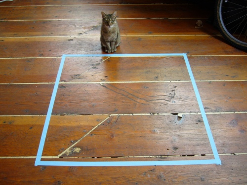 (unless, of course, your cat groks abstract spatial division)
